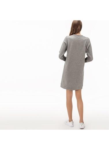 Lacoste Kadın  Elbise EF1928.28G Gri